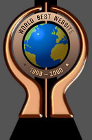 World Best Website Bronze Award